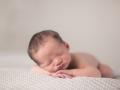 Newborn Portraits in Mebane